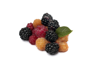 BlackBerry, red and yellow raspberries on white background
