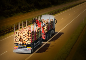 Logging truck on the highway.