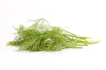 Fresh branches of green dill