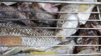Saltwater fish in grill