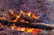 canvas print picture - flame of camp fire