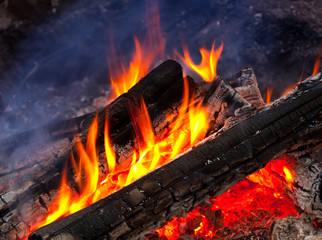 flame of burning woods