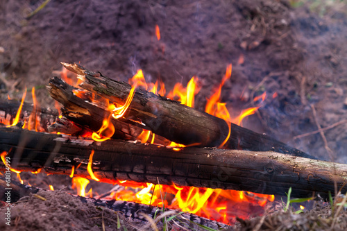 canvas print picture flame of camp fire