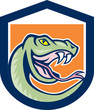 Rattle Snake Head Shield Cartoon