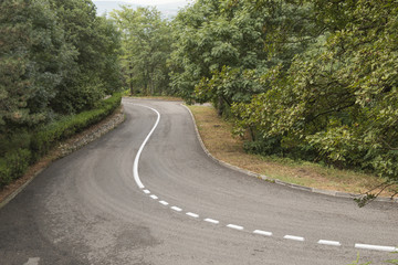 Twisting asphalted road with a dividing line