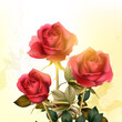 Grunge romantic background with roses