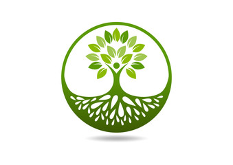 natural root tree  logo abstract health education Roots