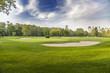 Golf course - 68817780
