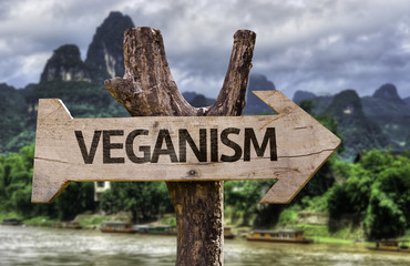 Veganism wooden sign with a forest background