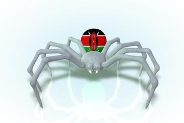 Kenya Flag Spider