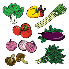 Vegetable Color Set