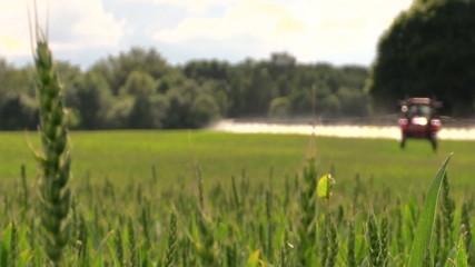 tractor spray green crop field on farm sunny day. Focus change.
