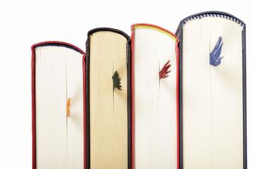 Bücher nebeneinander stehend