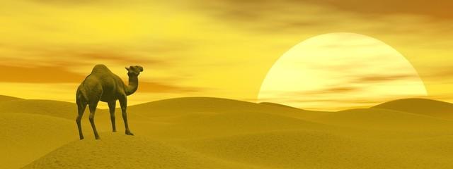 Camel in the desert - 3D render