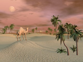 Camels in the desert - 3D render