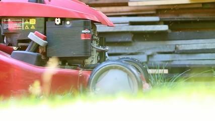 grass-cutter, mower