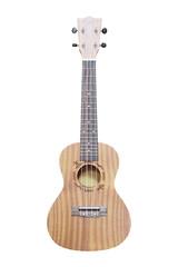 The image of a hawaiian guitar