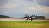 Jet fighter Mig-29 - 68831523
