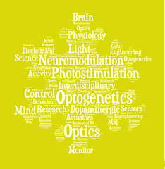 Optogenetics Word Cloud