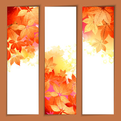 Autumn Vector Watercolor Headers