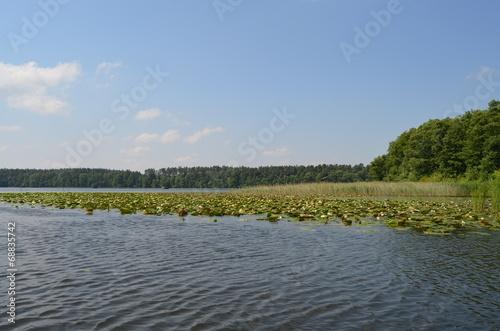 canvas print picture Mecklenburger Seenplatte