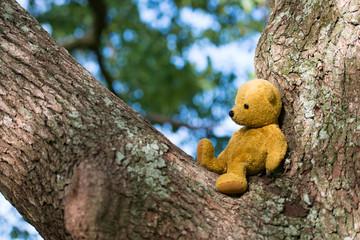 木の上に座る熊の縫い包み