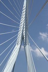 Close up Erasmus bridge Rotterdam