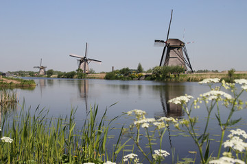 Dutch Windmills, Kinderdijk UNESCO site