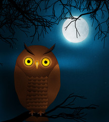 owl at night