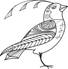 Magic Abstract Bird