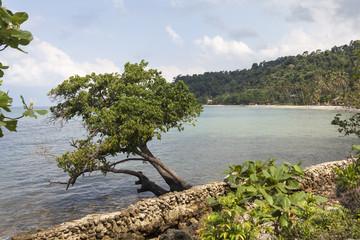 Küste und Strand auf der Insel Ko Chang