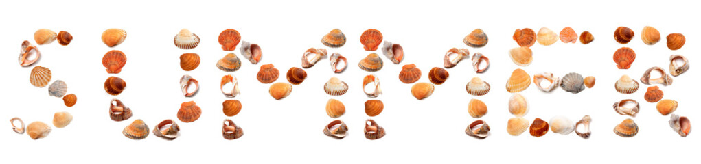 S U M M E R text composed of seashells