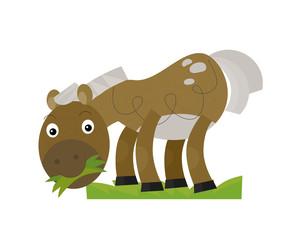 Cartoon horse - illustration for the children