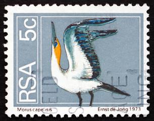 Postage stamp South Africa 1974 Cape Gannet, Seabird