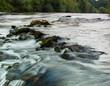 canvas print picture - wildwasser