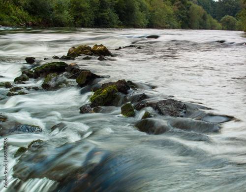 canvas print picture wildwasser
