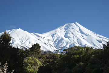Mount Egmont behind bush clad slopes