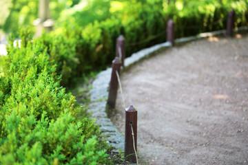 Walkway in green park