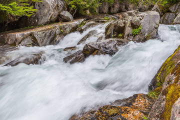 Rapids on the Paradise River, Mt. Rainier National Park