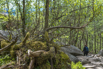 Hiker in Norway