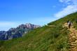 夏の登山道