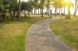 walkway in a beautiful Park
