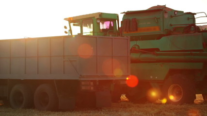 Harvester is Unloading Grain to the Truck and Lens Flare