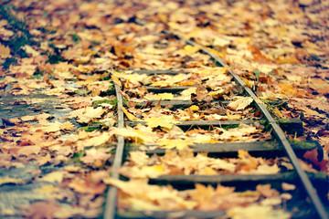Railways autumn leaves