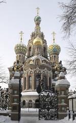 Вид на собор Спаса на Крови из Михайловского сада