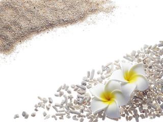 砂とプルメリア