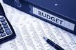 Budget Concept - 68870104