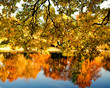 Herbst: Wasserspiegelung in ruhigem See :)