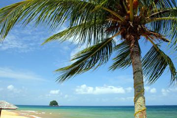 Tioman island, Malaysia ..