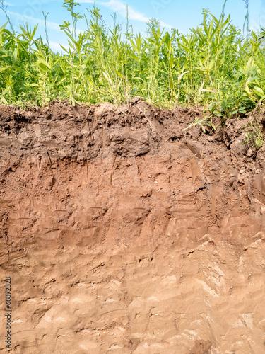 Leinwanddruck Bild Querschnitt der verschiedenen Bodenschichten des Erdreich